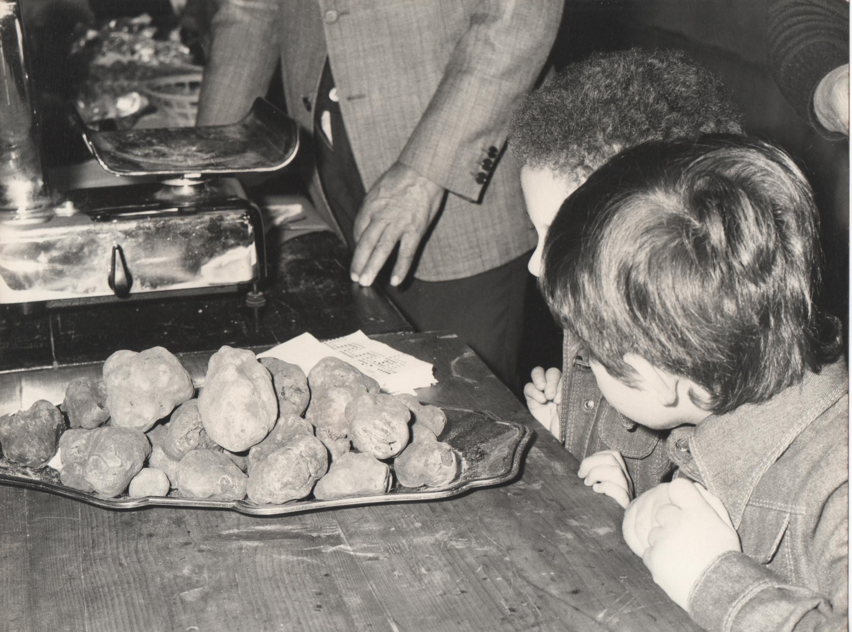 gazzarrini tartufi di san miniato la tradizione